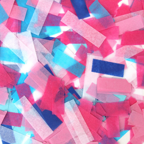 Gender Reveal Pink and Blue Confetti