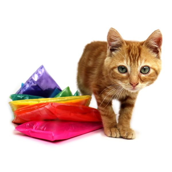 sample_packet_kitty