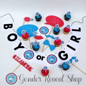 Gender Reveal Party Accessories